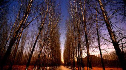 艾山星空主题公园5.jpg