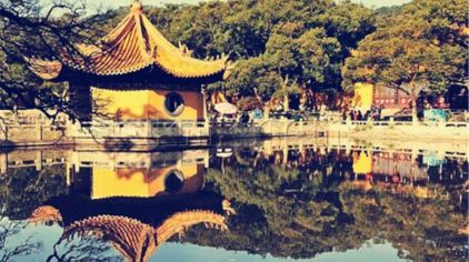 古樟植物园1.jpg
