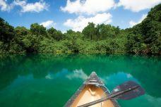 瓦努阿图-丁丁爱冒险