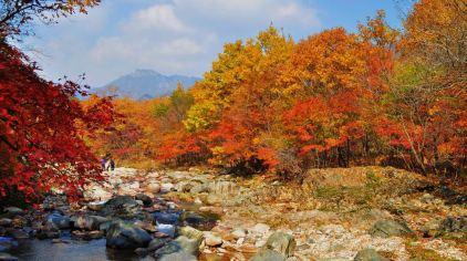 蒲石河 (3).jpg