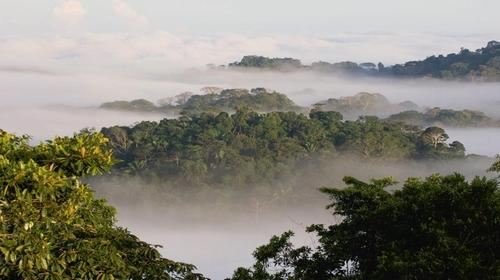 巴拿马图片