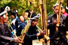 黔东南-叶子飞刀