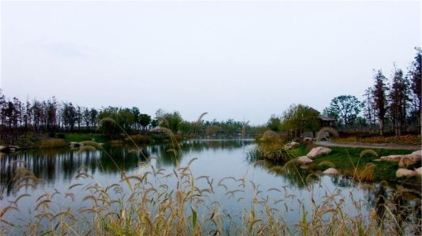 江湾景区8.jpg