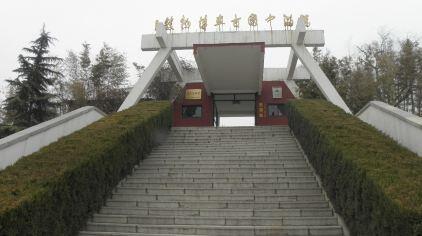 临淄古车博物馆 (8).jpg