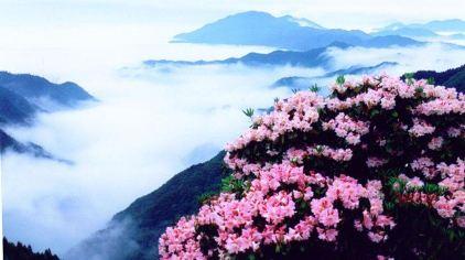 天台山华顶国家森林公园1.jpg