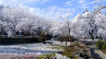 庐山冬景4