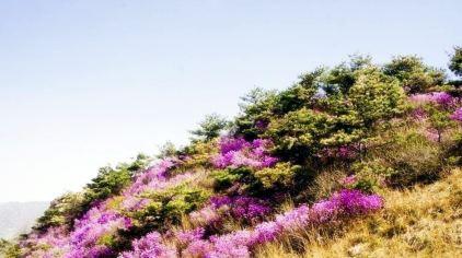 牙山国家森林公园1.jpg