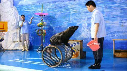 福州左海海底世界1-9.jpg