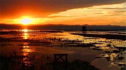 达里湖-北岸景区 (1).jpg