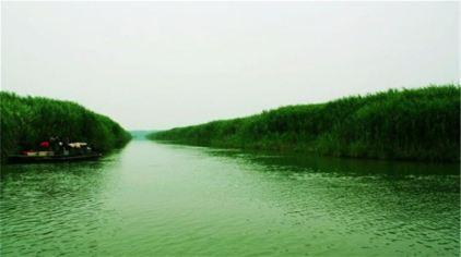 湖南西洞庭湖湿地公园7.jpg