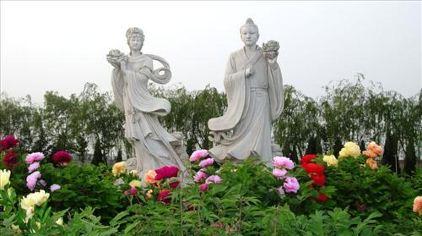 汉牡丹园6