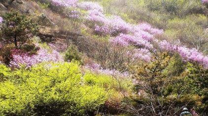 牙山国家森林公园2.jpg