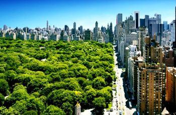 夏威夷旅游购物攻略_中央公园,纽约中央公园攻略/地址/图片/门票【携程攻略】
