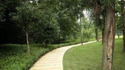 桂林园林植物园4
