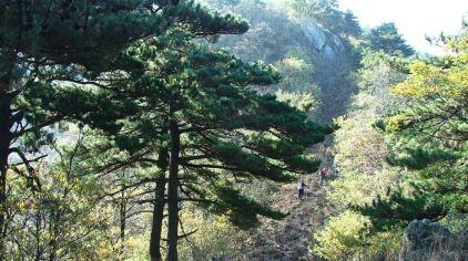 龙王山3.jpg