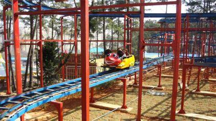 湖南省森林植物园乐林游乐园12.jpg