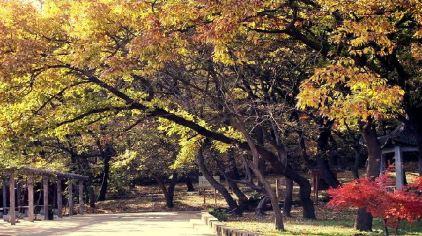 滁州韭山洞 (6).jpg