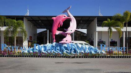 海豚世界1.jpg
