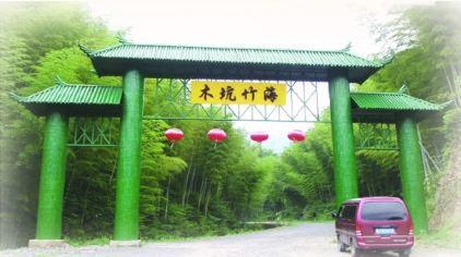 木坑竹海 (5)