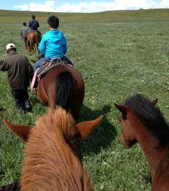 项城游记图文-自驾八日游 一路向北去内蒙古草原 (2014-8-8)
