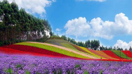 十里蓝山 (7).jpg