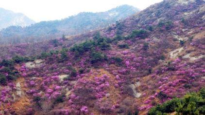 牙山国家森林公园5.jpg