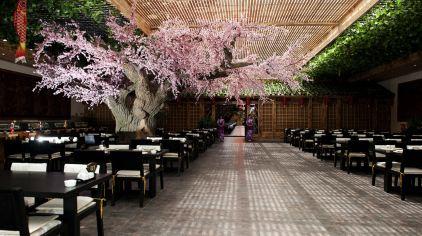 46日式餐厅.jpg