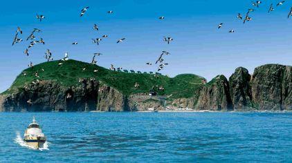 海驴岛10.jpg