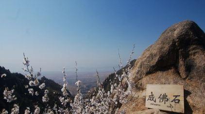 云峰山 (5).jpg