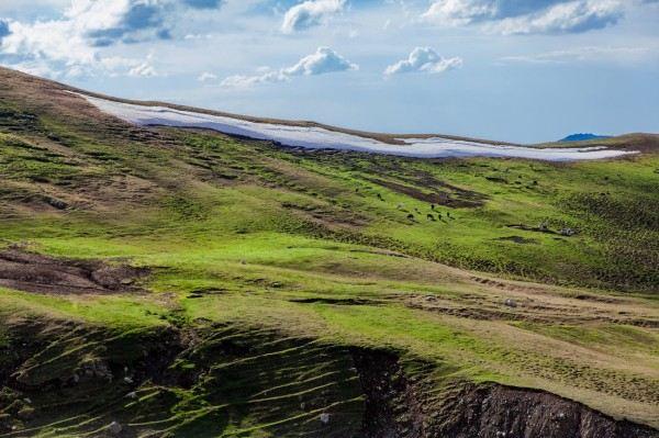 几个2014年_2014年我和几个驴友的伊犁环天山行+101省道+海量美图