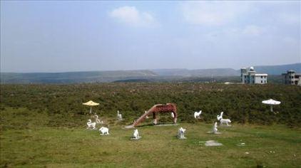 龙里大草原一景