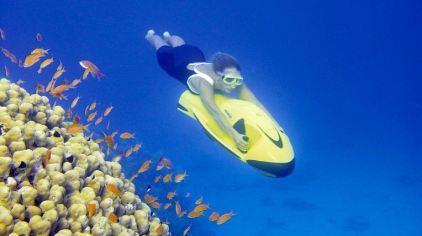 骑乐海豚水下推行器14.jpg