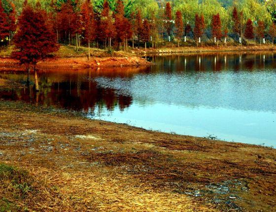 東湖山風景區作為德陽城市使東湖山公園煥然一新,并免費向全民