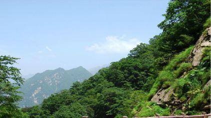 太平森林公园5.jpg