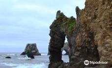 Cape Giant-南萨哈林斯克