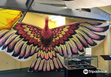 World Kite Museum & Hall of Fame-长滩