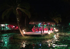 Over-Water Night Show & Dinner-穆里