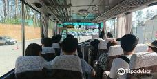 Mt. Kame-气仙沼市